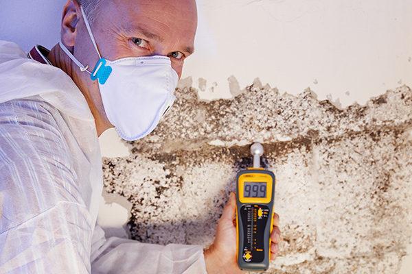 Hazardous Material Removal Contractors in Edmonton